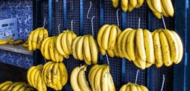 Wieviele Kalorien hat eine Banane? Zahlen und Fakten!