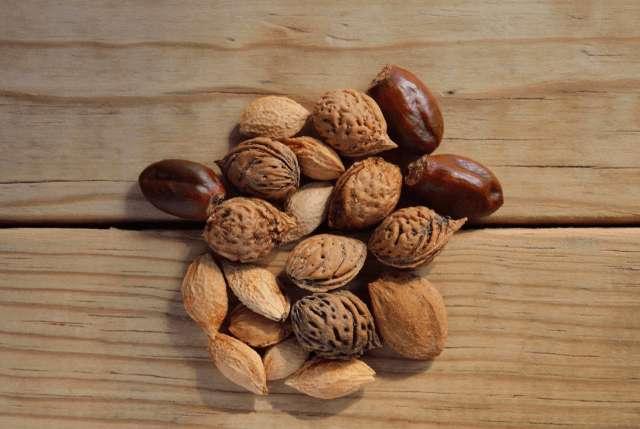 Nüße mit wenig Kohlenhydrate – Welche kannst du essen?