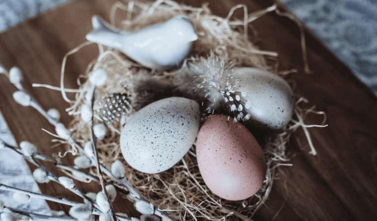 Ostereier natürlich färben – Ein tolles Tutorial!
