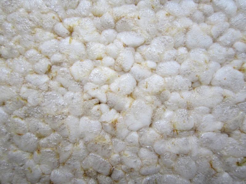 Reiswaffeln – Ist dieser Snack gesund? Was du wißen solltest!